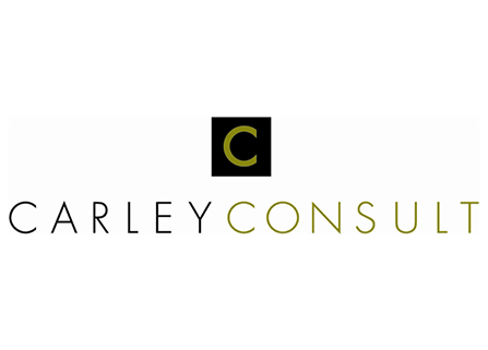 Carley Consult